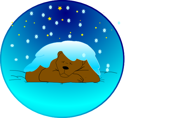 11949897481184965685sleeping_bear_under_sta_02-svg-hi