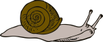snail-clip-art-clipart-best-jttfwz-clipart